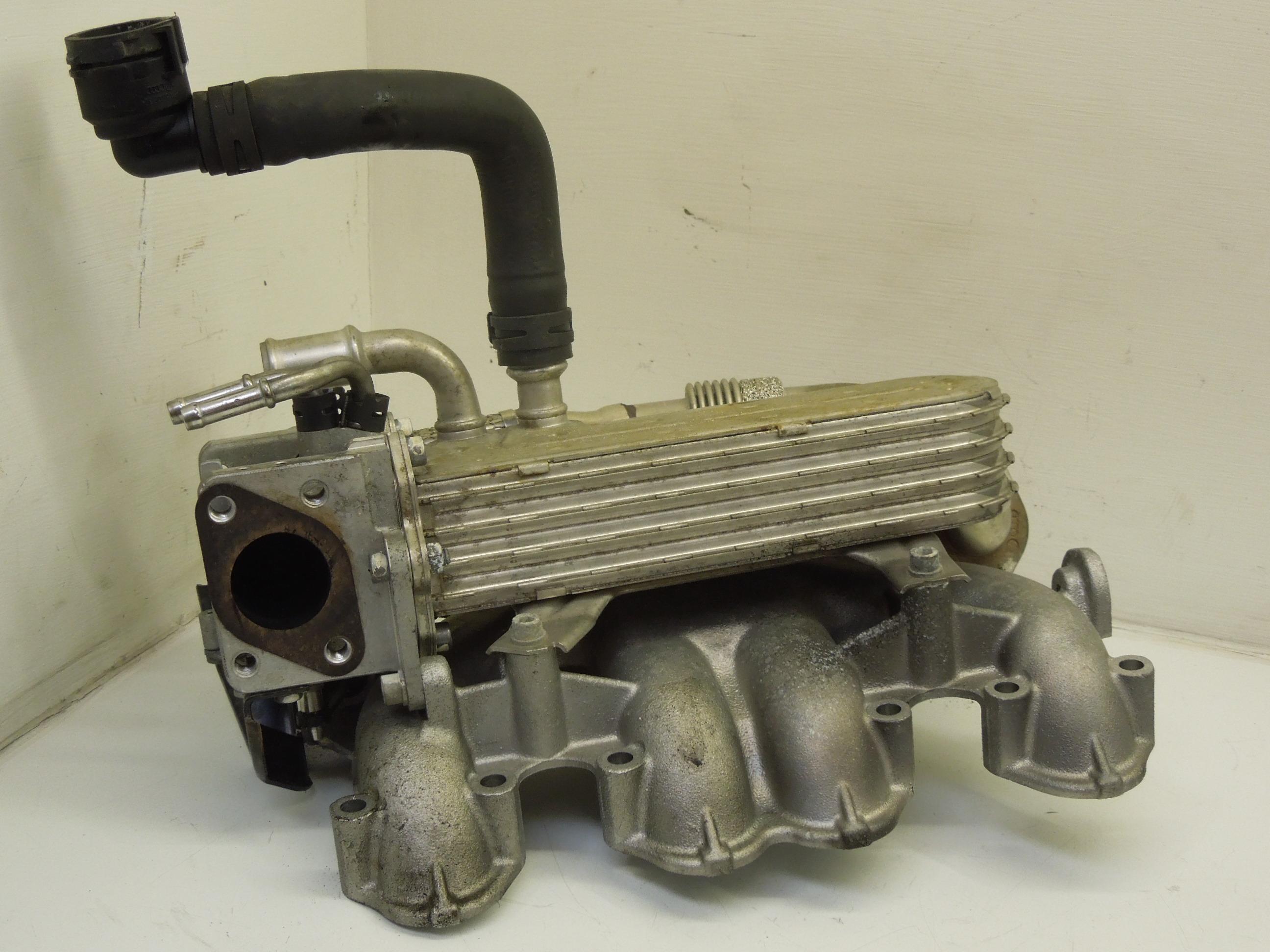 VW-BORA-GOLF-PASSAT-1-9-TDI-COLLETTORE-DI-ASPIRAZIONE-E-EGR-ASSEMBLY-038131513AD